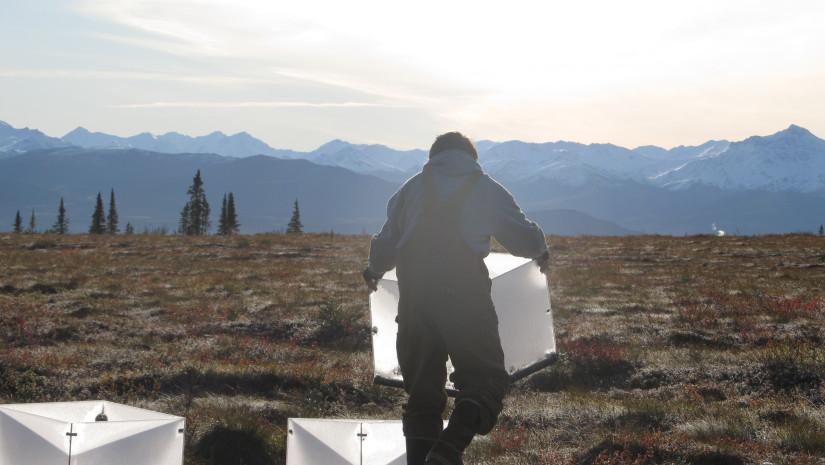 Tundra Warming Study