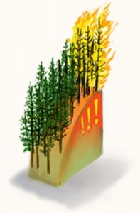 Artist rendition of wildfire changing the future ecosystem of a forested area