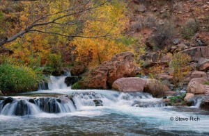 Fossil Creek, Arizona with fall foliage in background.
