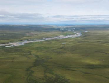 permafrost landscape in toolik alaska