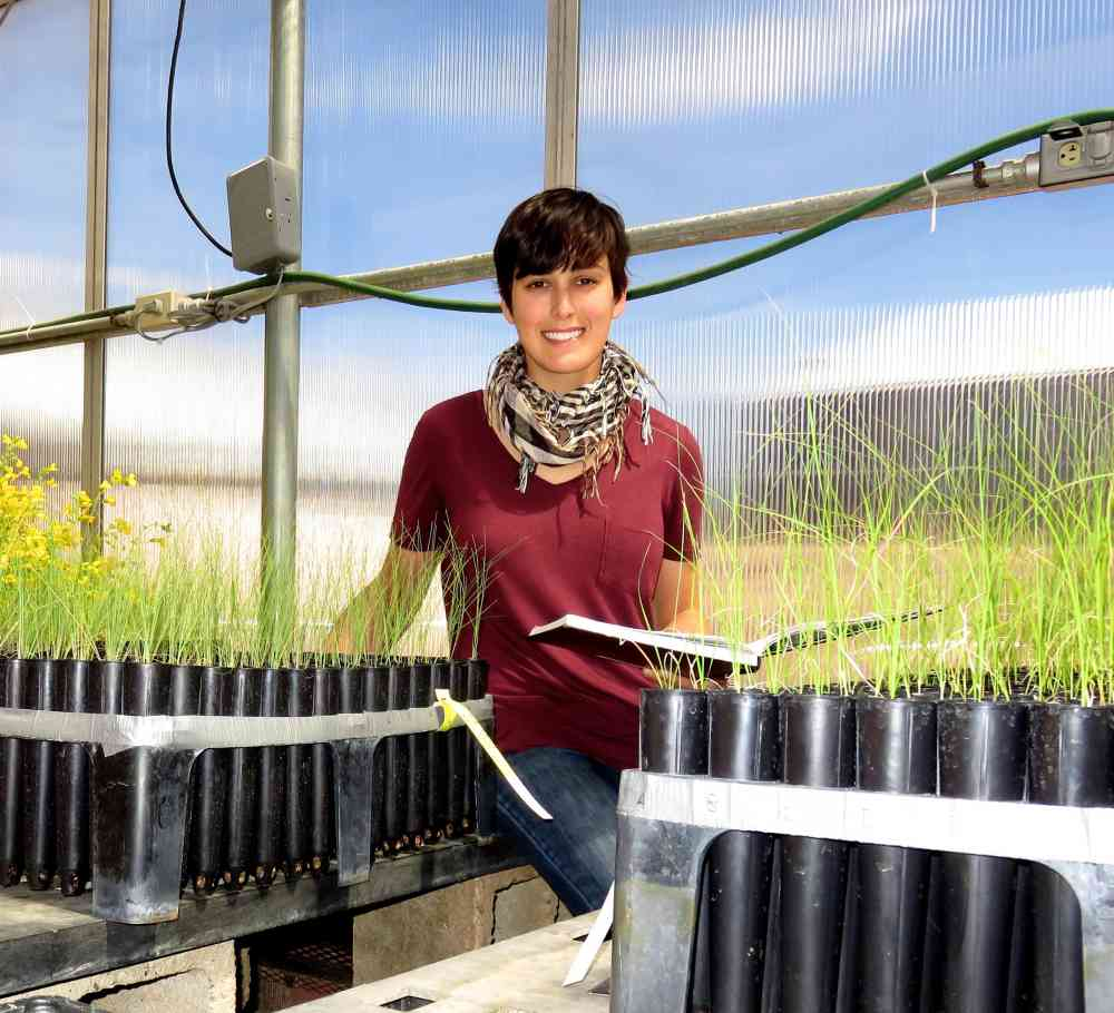 rachel rubin with plant samples