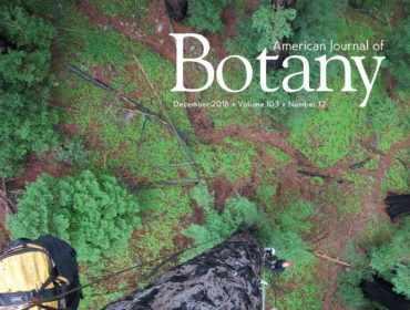 Cover_American_Journal_Botany