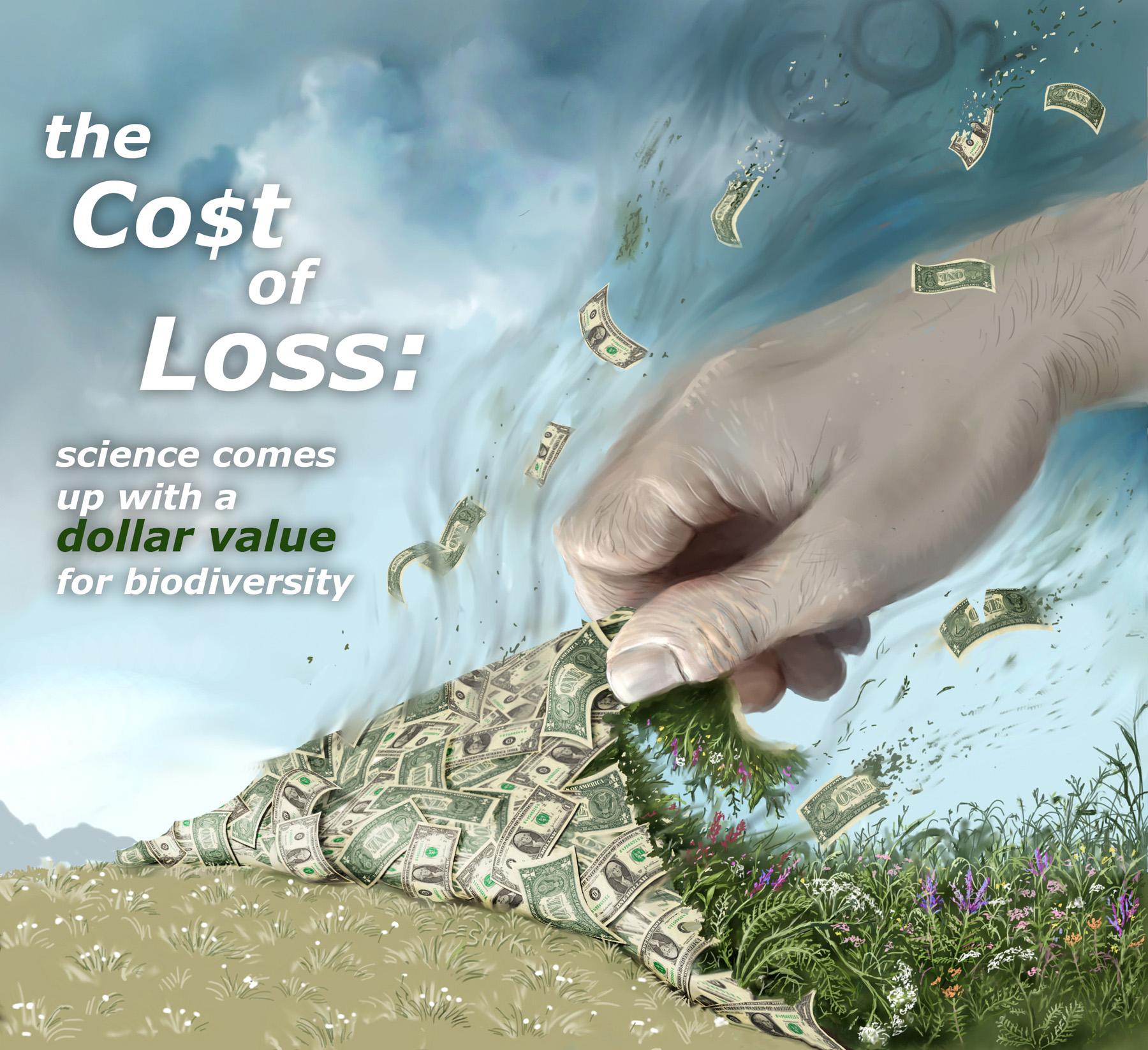 leshyk illustration dollar value for biodiversity