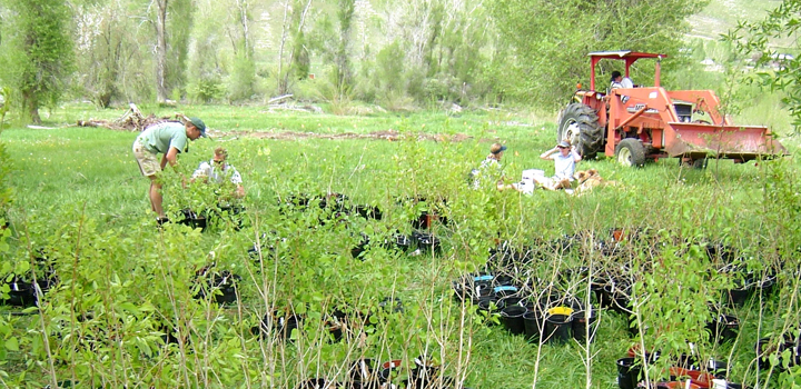 research being done in a field