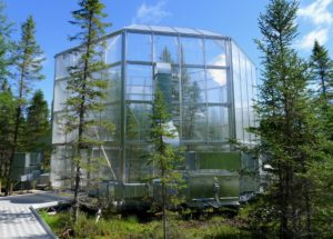 Experimental enclosure at the SPRUCE site