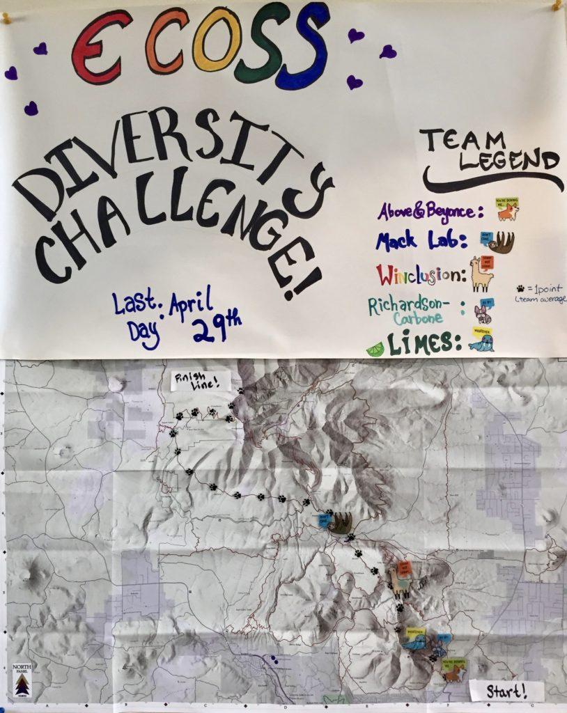 Diversity_challenge